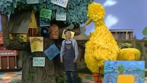 Big bird in the land of makebelieve