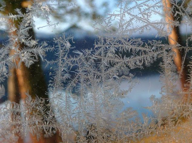 ice-flowers-51571_1280