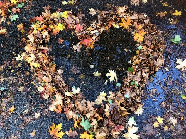 heart-4551526_1920